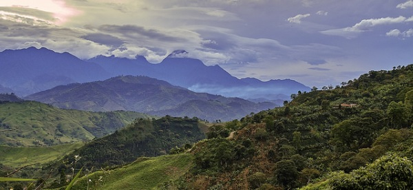 Lush view of mountain range in Colombia