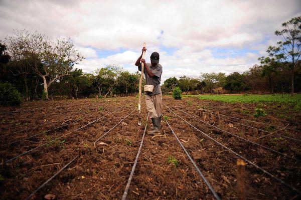 Farmer in Nicaragua